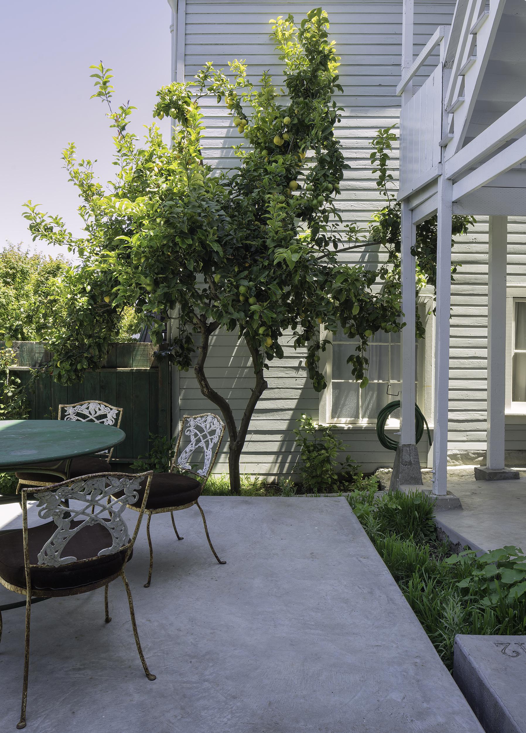 Bernal heights residence melander architects inc - Limpressionnante residence bernal heights san francisco ...